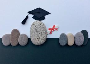 关于做好高等学历继续教育2019年拟招生专业填报有关工作的通知