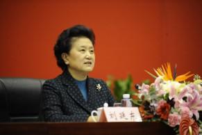 国务院决定成立国家教材委员会,副总理刘延东任委员会主任