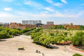 """宁波大学""""双创班""""第一周线上教学质量报告"""